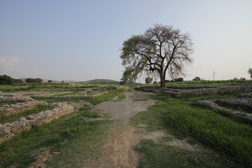 Sirkap site near Taxila, Pakistan