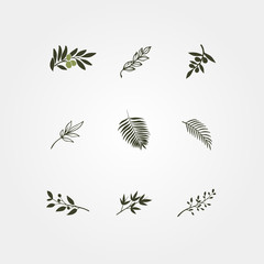 Set of green vector olive branch logos.