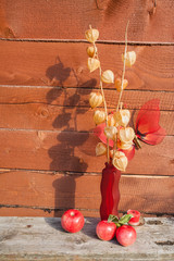 The herbarium in a red vase stands on a wooden bench