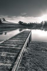 Healesville Vineyard