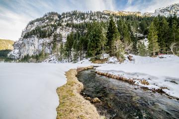 Snowey River