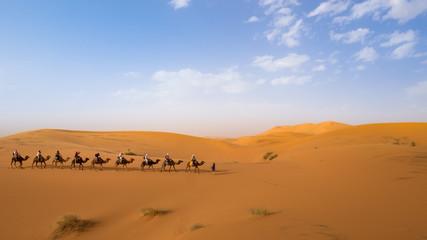 On Camel Back