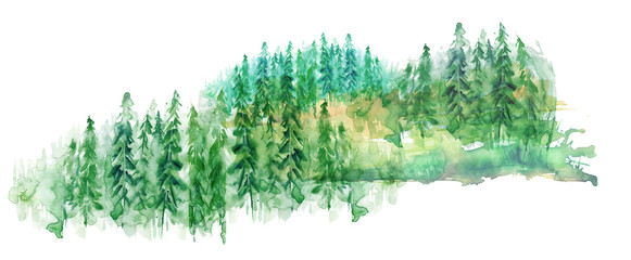Watercolor group of trees - fir, pine, cedar, fir-tree. green forest, countryside landscape. Drawing on white isolated background.