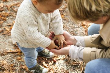 Kleinkind und Mutter sammeln KastanienLETS WAIT UNTIL NEXT AUTUMN