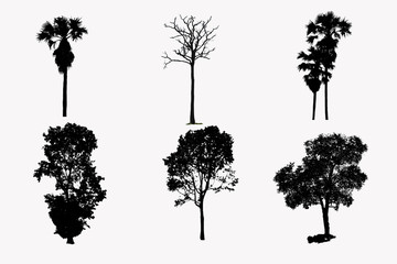 illustration with tree silhouette set isolated on white background .