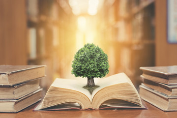 World philosophy day concept with tree of knowledge planting on opening old big book in library...