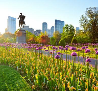 Boston Public Garden And City Skyline At Dawn