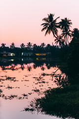 Palm trees and houses view at sunset with water reflection. Kerala backwaters, India.