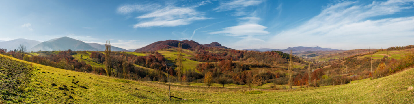 panorama of mountainous rural area in autumn. beautiful countryside with mountain ridges and forest with red foliage on hillsides