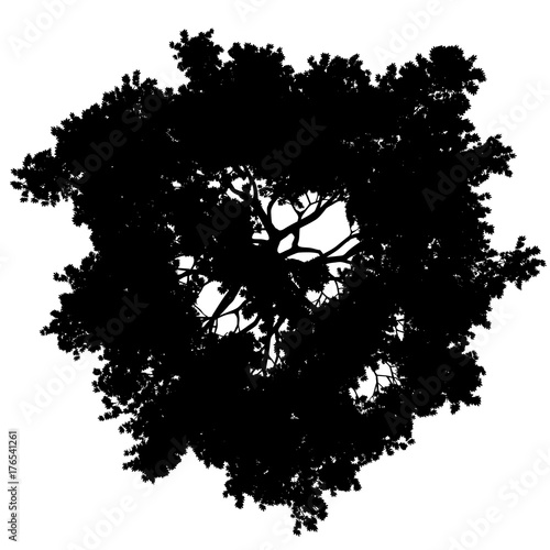 tree top view silhouette isolated - black - vector