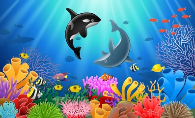 Killer whales and dolphin cartoon with underwater view and coral background. Vector Illustration.