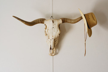 Cowboy hat hangs on tip of skull horn