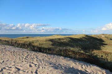 Stranddüne Dänemark mit Blick aufs Wasser