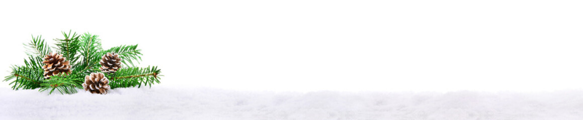 Tannenzweig im Schnee - Panorama