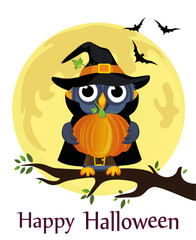Halloween. Cartoon owl in a witch costume against a background of the moon with bats sitting on a branch. Vector