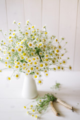 A bouquet of camomile flowers in pitcher