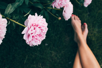 overhead of a peony bush and a woman's legs