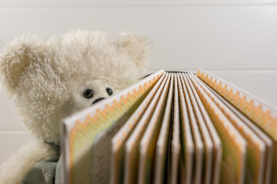 Teddy bear with book on a white background. Education or playing concept.