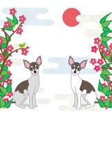 おしゃれな犬と梅の花の和風イラストポストカード