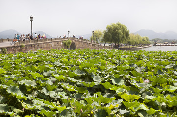 Broken Bridge, West Lake, Hangzhou
