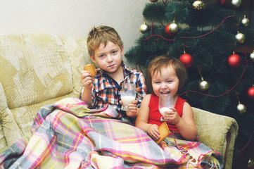 fun kids cookies covered with a blanket by the Christmas tree .The family relaxes on Christmas eve