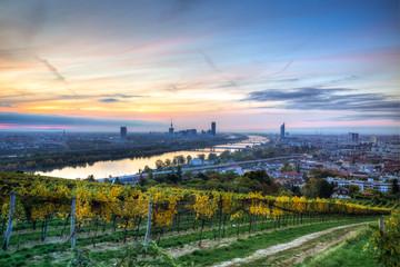 Wien erwacht #6