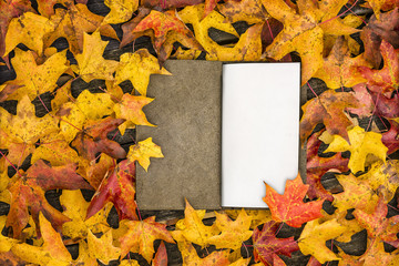 Libreta de Otoño / Booknote in Fall