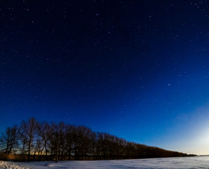 Winter the starry sky above the trees. The moon lights up the snow field.