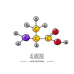Hand drawn doodle Alanine chemical formula icon Vector illustration Cartoon molecule element Sketch amino acid molecular structure Structural scientific formula isolated on white background