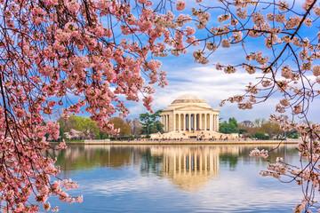 Washington DC Spring