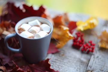 Autumn cocoa with marshmellows
