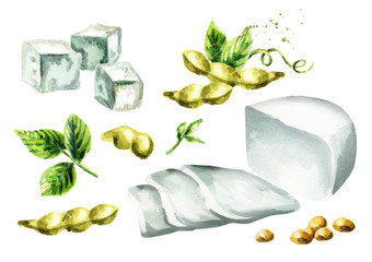 Soy tofu set. Watercolor hand drawn illustration