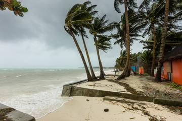 A tropical beach awaiting the arrival of a major hurricane