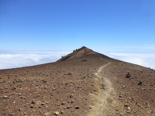 And another way through the volcanoes on the island of La Palma, one of the Canary Islands