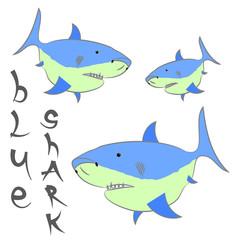 shark blue vector