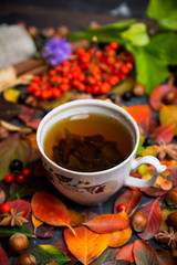 Cup of tea with autumn leaves, nuts, berries and spices on the rustic background. Shallow depth of field.