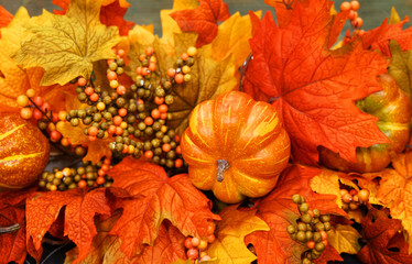 Pumpkin and autumn colorful leaves decoration for thanksgiving