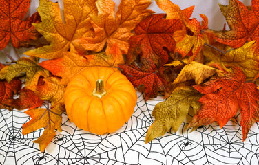 Pumpkin and autumn colorful leaves decoration for Halloween