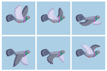 Cartoon flying pigeon animation sprite sheet