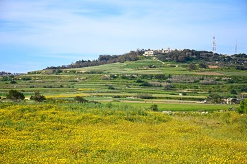 View across agricultural fields and meadows during the Springtime, Imtarfa, Malta.