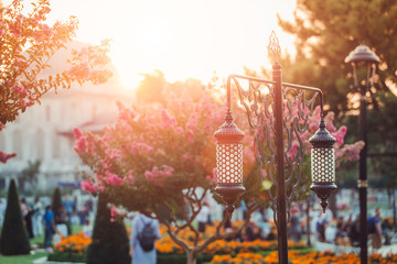 Traditional islamic ramadan lantern and blooming trees in park at Sultan Ahmet square near Blue Mosque in Istanbul, Turkey