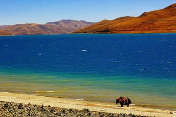 sacred lake in tibet landscape