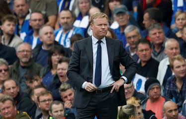 Premier League - Brighton & Hove Albion vs Everton