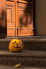 Cute funny Halloween pumpkin cat