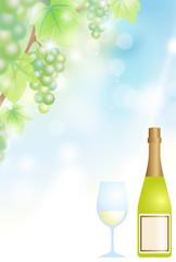 白 ワイン ブドウ酒