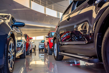 New cars at dealer showroom