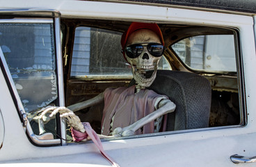 Skeleton in Sunglasses Driving a Car
