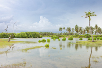 Kalpitiya Lagoon, Sri Lanka
