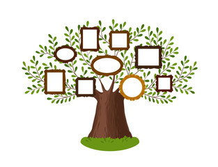 Genealogical family tree with picture frames. Pedigree, genealogy, lineage, dynasty concept. Vector illustration