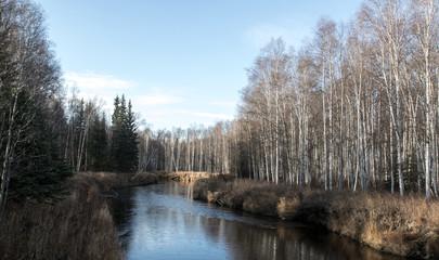 Tolovana River Autumn